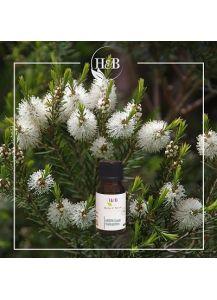 Αιθέριο Έλαιο Τεϊοδεντρο- tea tree oil