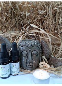 Κεραμική Συσκευή Αιθέριων Ελαίων Βούδας
